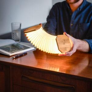 cadeau écologique lampe accordéon gingko 1