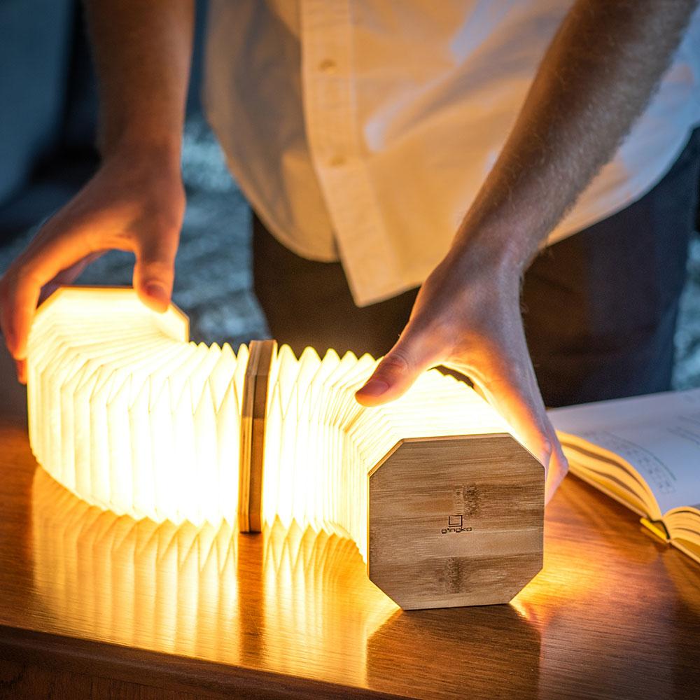 cadeau écologique lampe accordéon gingko 2