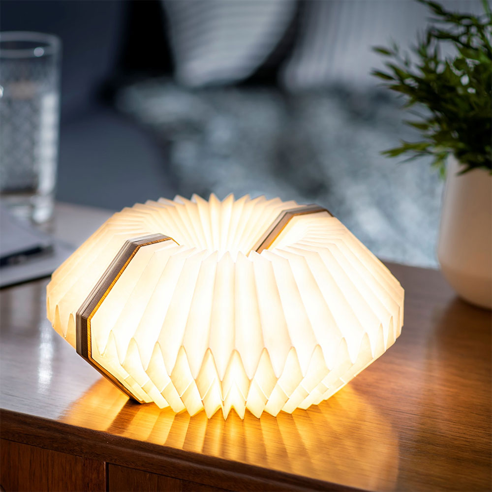 cadeau écologique lampe accordéon gingko 3