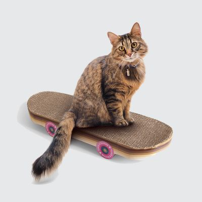 Griffoir skateboard pour chats