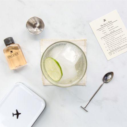 Kit de Voyage Carry On Cocktails