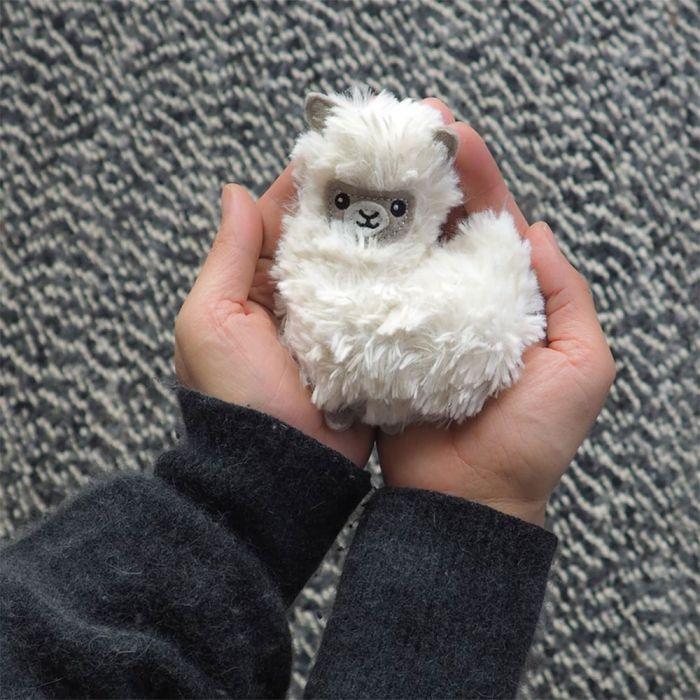 Mini Lama Chauffant