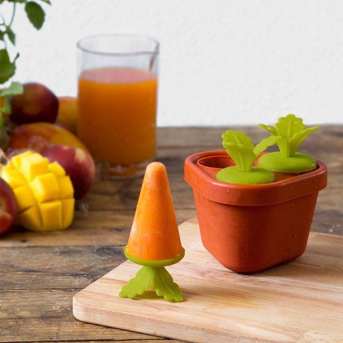 Veggie Popsicle – Moule à esquimaux