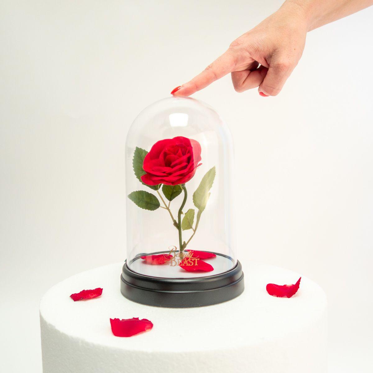 La Enchantée Bête Et Rose Lampe Belle uZOXPki