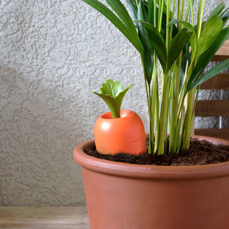 Comment Arroser Mes Plantes Pendant Les Vacances arroseur care it pour pots de fleurs