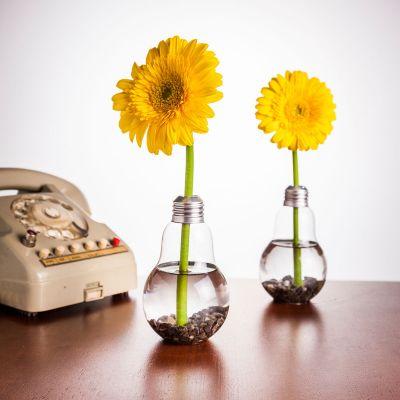 Cadeau anniversaire Femme - Set de 6 Vases ampoules