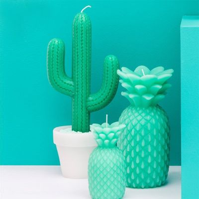 Cadeaux rigolos - Bougie Cactus