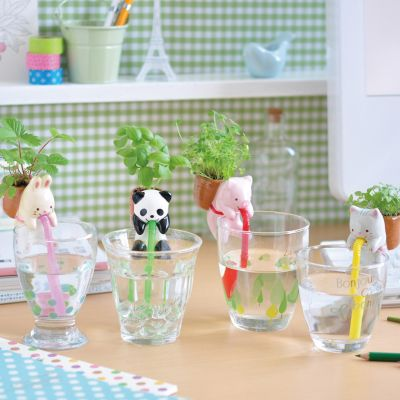 Top Produits - Chuppon Plante Animal