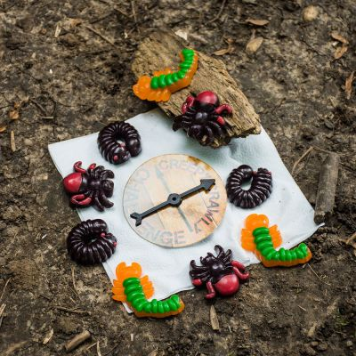 Plaisirs gustatifs - Bonbons Creepy Crawly Challenge