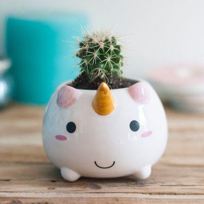 Décoration & Mobilier - Mini Pot de fleur Licorne