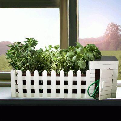 Cadeaux de Noël pour parents - Mini jardin d'intérieur