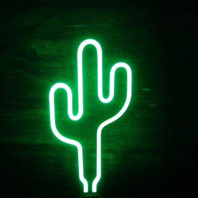Cadeau pour sa copine - Lampe Néon Cactus