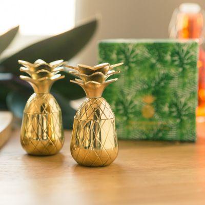 Verres & Mugs - Verres à shot en métal Ananas