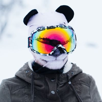 Outdoor & sport - Cagoule de Ski Beardo Animaux