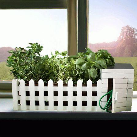 Mini jardin d'intérieur