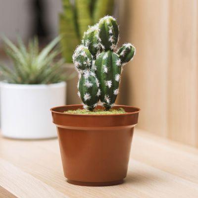 Gadgets pour la maison - Cachette Secrète Mini Cactus