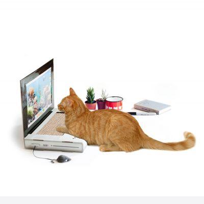 Cadeau pour sa copine - Grattoir pour chat ordinateur