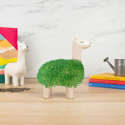 Petits cadeaux pas cher - Le Lama Vert