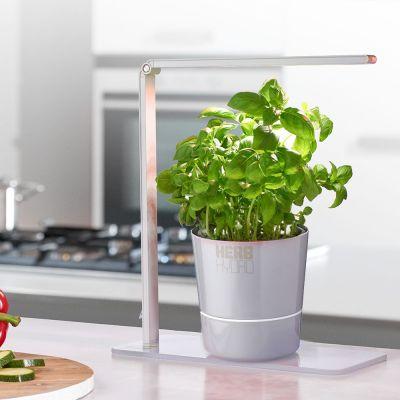 Gadgets pour la maison - Lampe Herb Booster