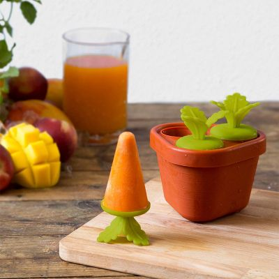 Été - Veggie Popsicle – Moule à esquimaux