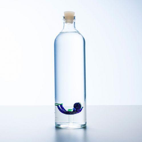 Idée cadeau - Bouteille d'eau avec plongeur